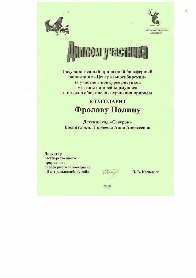 Диплом Фролова Полина-1